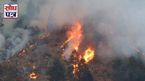सुदूरपश्चिम प्रदेशमा डढेलोले ३० प्रतिशत वनक्षेत्र सखाप, धुँवाका कारण वायु प्रदूषण !